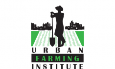 The Urban Farming Institue of Boston, Inc. Logo